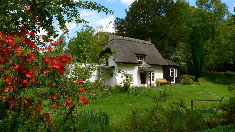 Dog Friendly Windermere Cottages