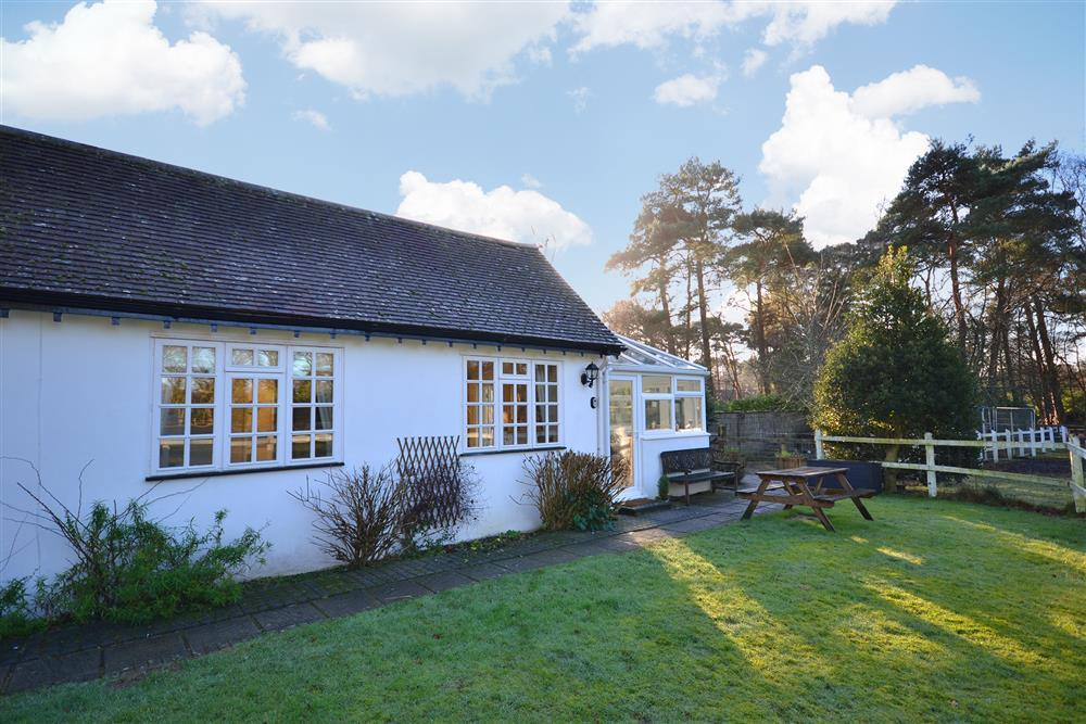 Holiday Cottages New Forest Dog Friendly